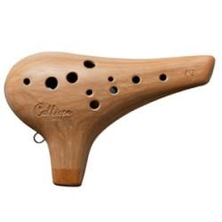 Guitarra Electroacustica de...