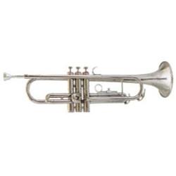 Marimba Majestic M6543H